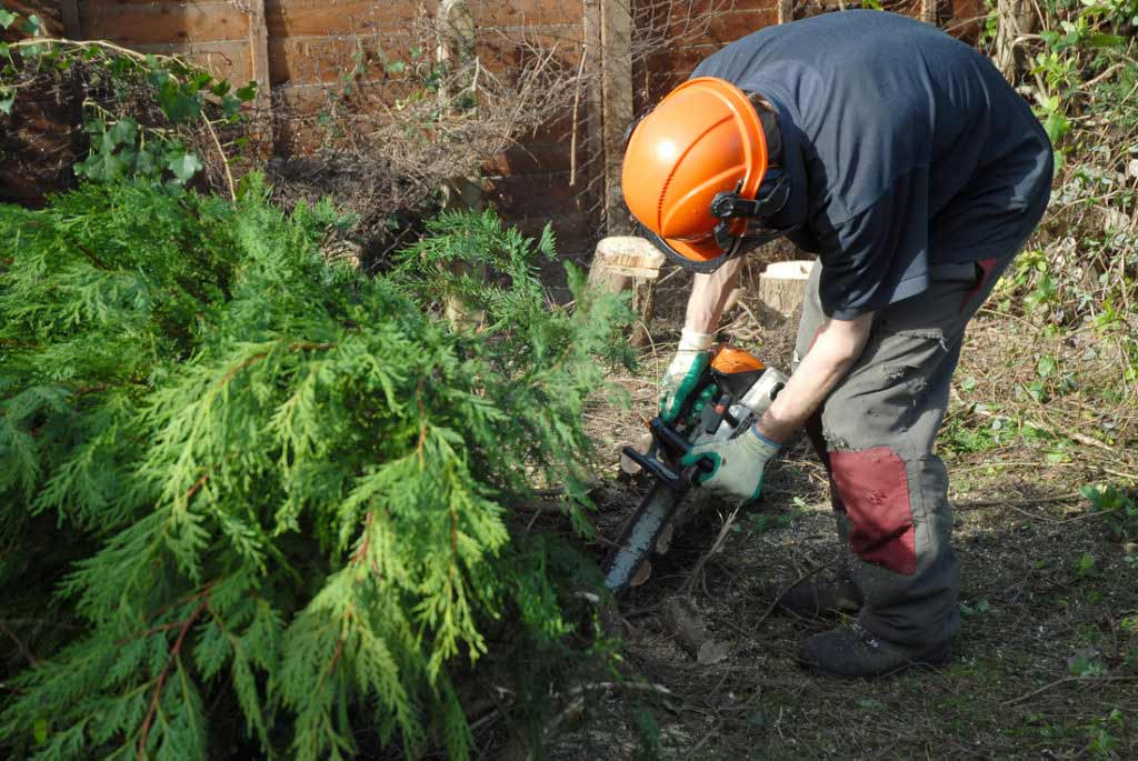 Landscaping in Manchester